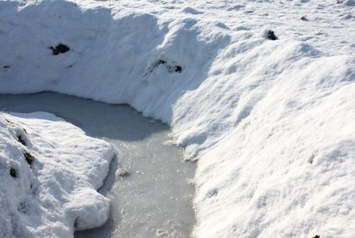 冬の用水路 2