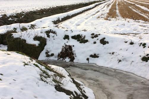 凍った用水路