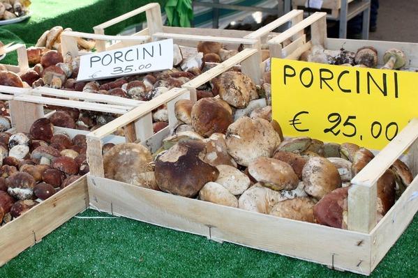 porcini1