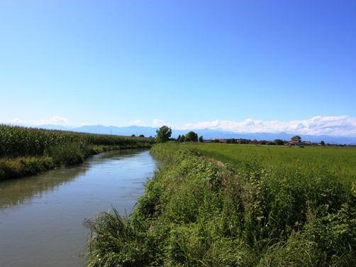 町の田園風景