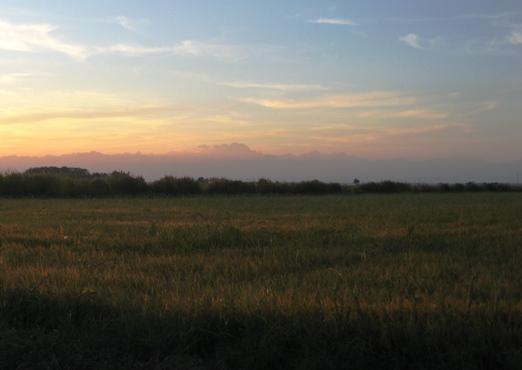 9月の田園