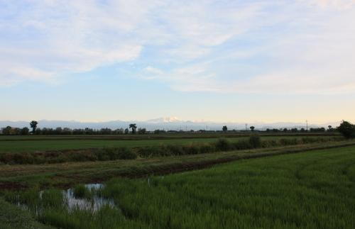 田園の景色 4