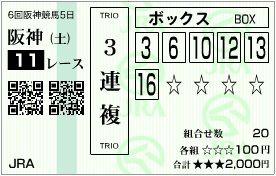 2011_6hanshin5_11r