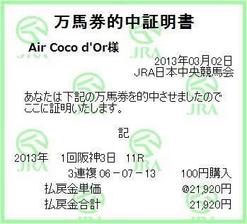 2013_1hanshin3_11r