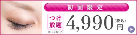 bn_syokai