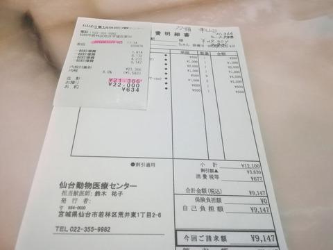 IMG_20181025_065336