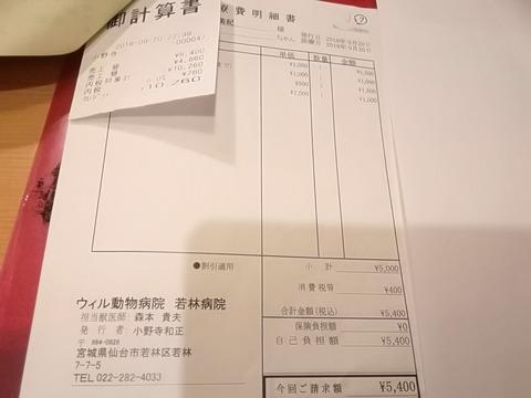 IMG_20181005_144103
