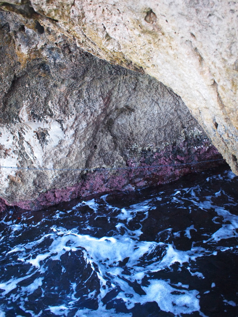 Capri9