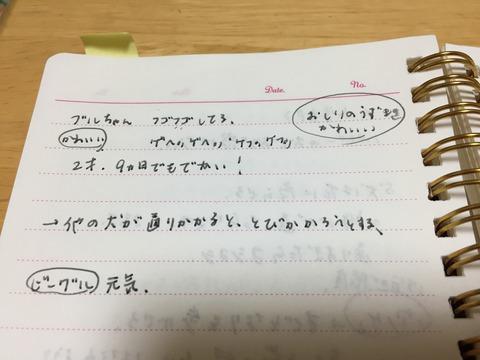 20170213_132835008_iOS