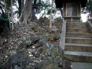 鹿島田たけうち37