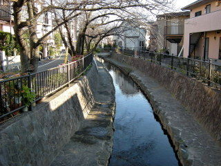 鹿島田たけうち13