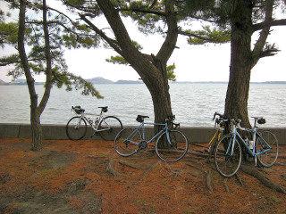 浜名湖SOCJ_31