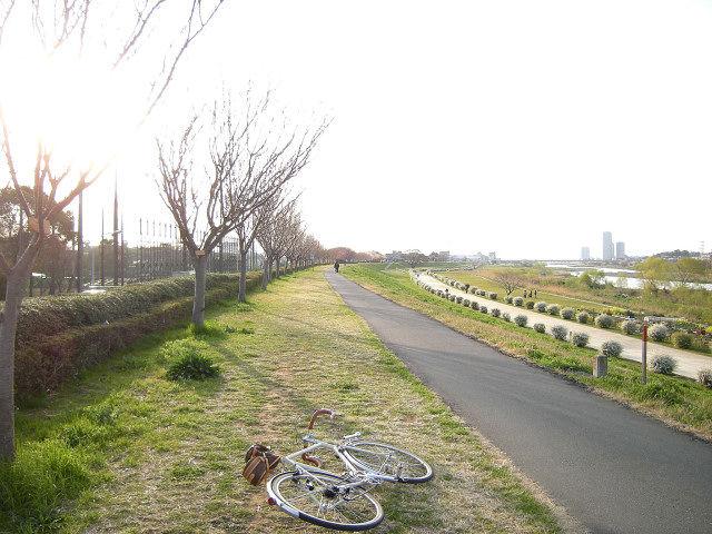 たけうち鴨カレー南蛮_9
