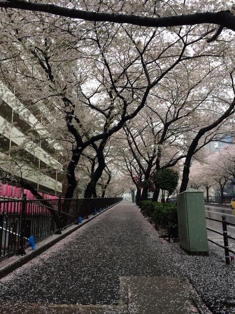 2014-04-03-14-54-29