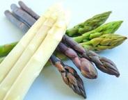 生産者限定 北海道産3色アスパラガスセット(パープル・ホワイト・グリーン)1kg【おがた農園】