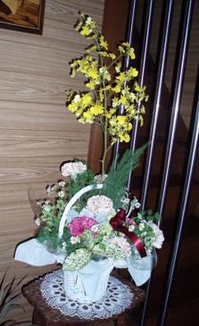 2009母の日