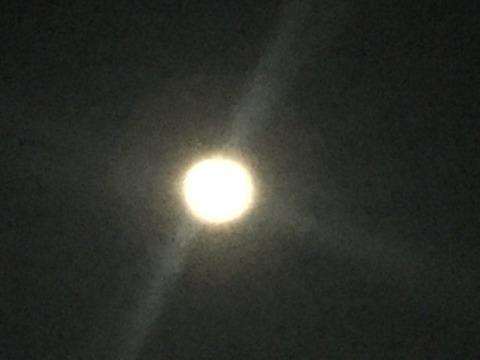 【雄物川釣行】夏バテと満月の大潮