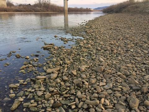 やっぱり川が好き!!