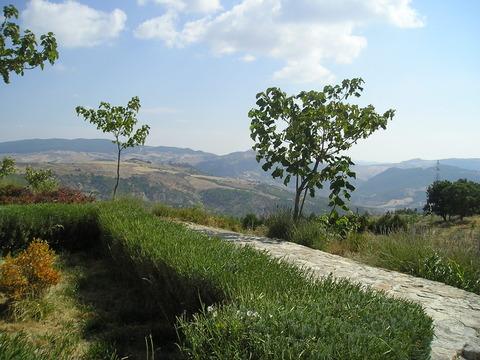 069la foresterina con bella vista