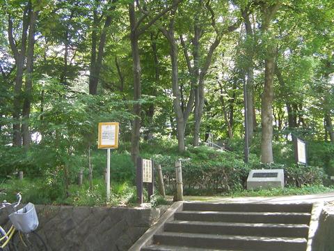 120805169塚山公園
