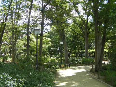 120805178・塚山公園