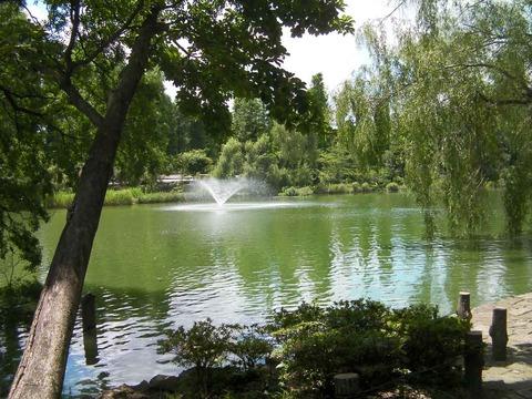 120805003井の頭公園の噴水