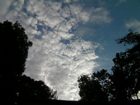 120804091雲