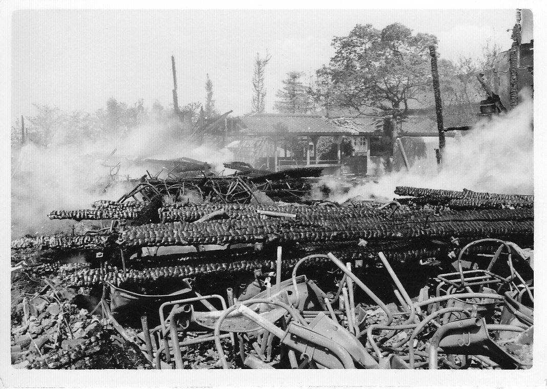 たかはまアーカイブス  たかはまアーカイブス『高浜中学校校舎燃える』コメント
