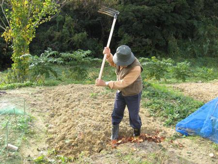 陶芸の粘土づくりと畑の土づくりに精をだす