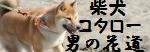 kota_kun_banner