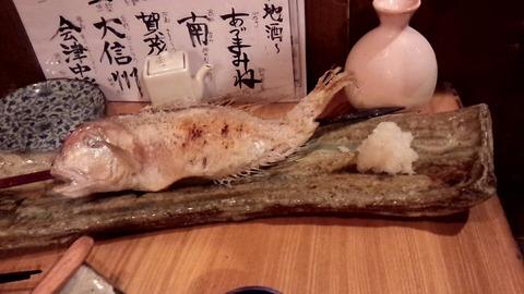 7 魚秀_5457
