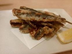 24 魚ひろ_170526_0042
