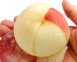 【軽トラ】 収穫前の桃 1500個盗まれる