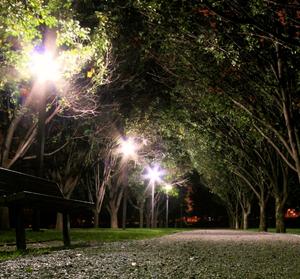 深夜の公園で涼みながら飲むセブンイレブンのコーヒーは格別だよね(´・ω・`)