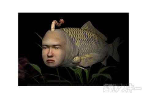 アフリカでは淡水魚が顔で相手を識別している 「餌係」を認識してる模様