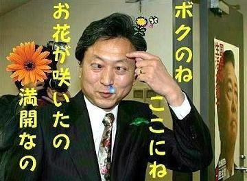 【アホ発見器】中国や韓国で大人気の「頭をお花畑」にするアイテム『ヘッドファーム』が日本上陸 輸入会社「確実にキテます」←wwwwwww