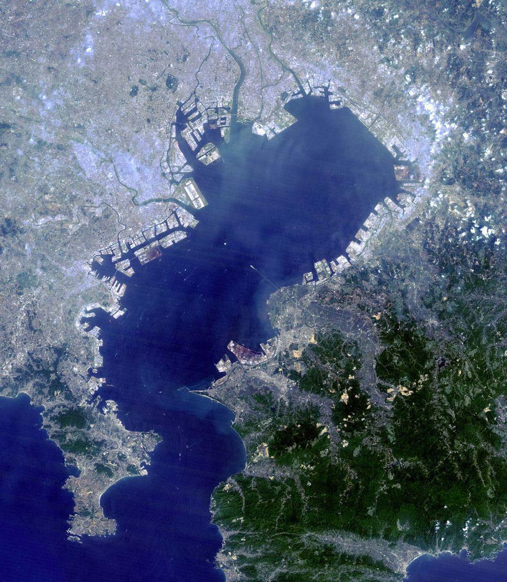 【怪獣出現?】 東京湾の水質データ 2か月以上閲覧できず ネット識者「わかりやすすぎる隠蔽」