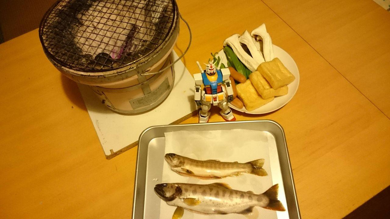 【素敵な】 魚釣ってきたから焼いて食うよ 【旅・食レポ】