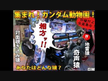【動物園】ゲーセン店員 ガンダム勢にきれる【基地外】