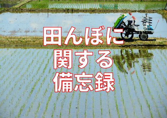 2017-08-24田んぼ