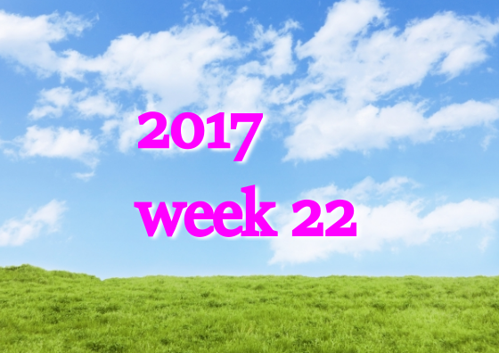 2017w22