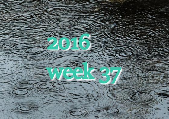 2016w37
