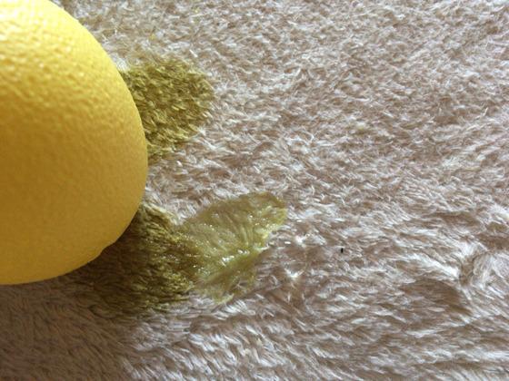 カーペットに付いたスライムにレモン汁をかける