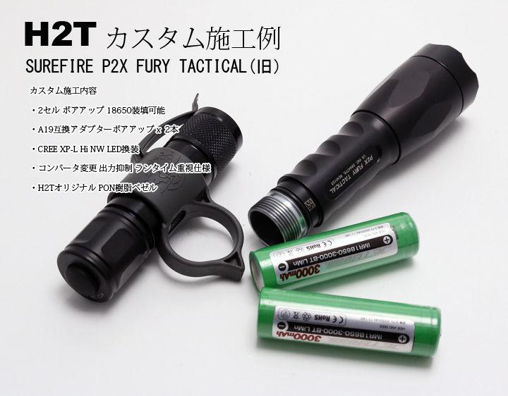 P2XTCUSTOM-1