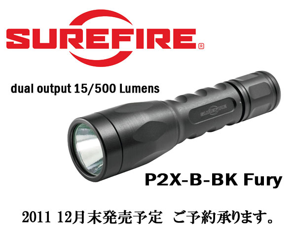P2X-B-BK