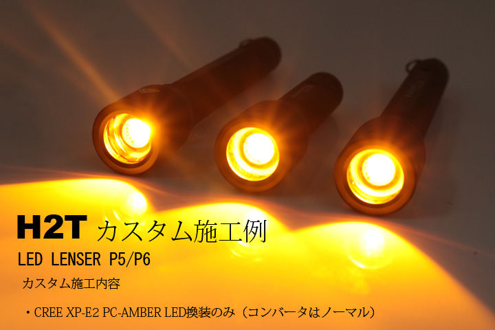 P5P6AMBER-1