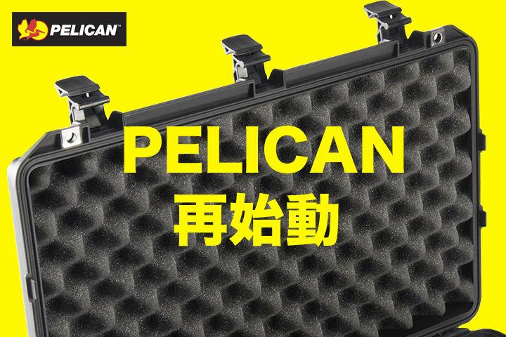 pelican main1