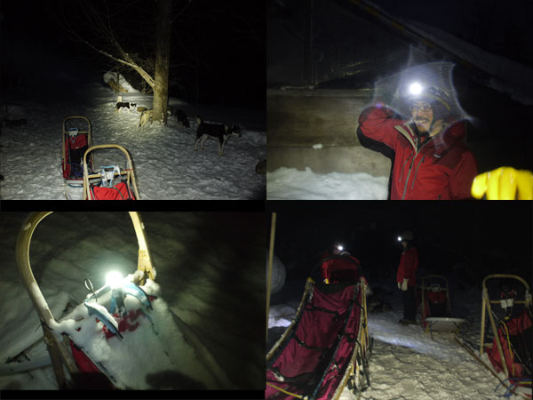dogsled1_7