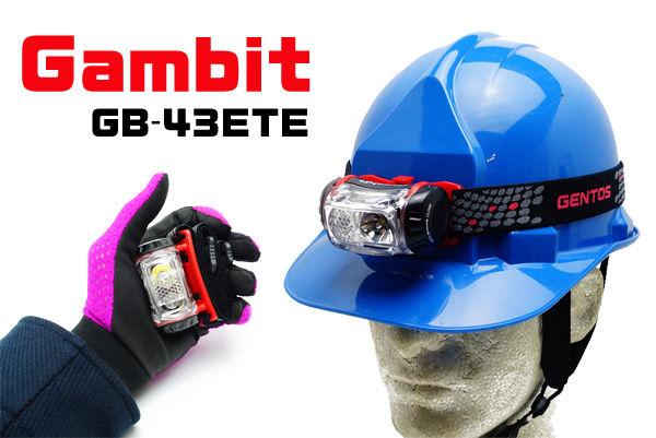 GAMBIT43-1