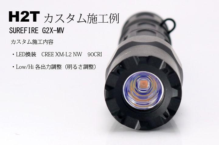 G2XMVH2T-1